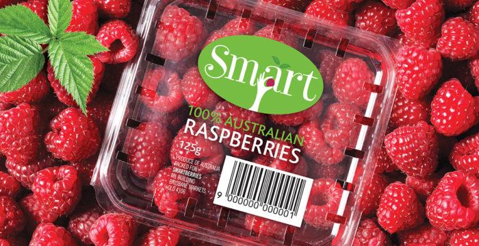 bao-bi-trai-cay-Smart-Berries-2